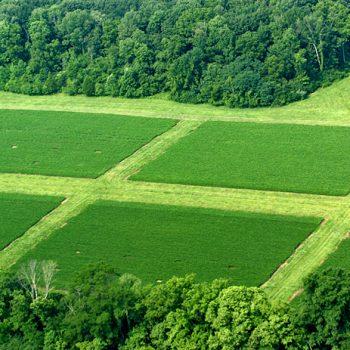 کشاورزي پایدار و ارگانیک