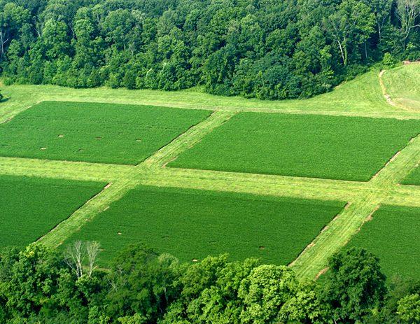 کشاورزی پایدار و ارگانیک