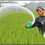 محصولات جدید کشاورزی