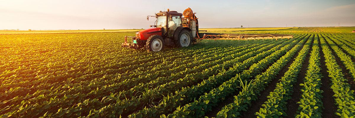 کود کشاورزی خارجی