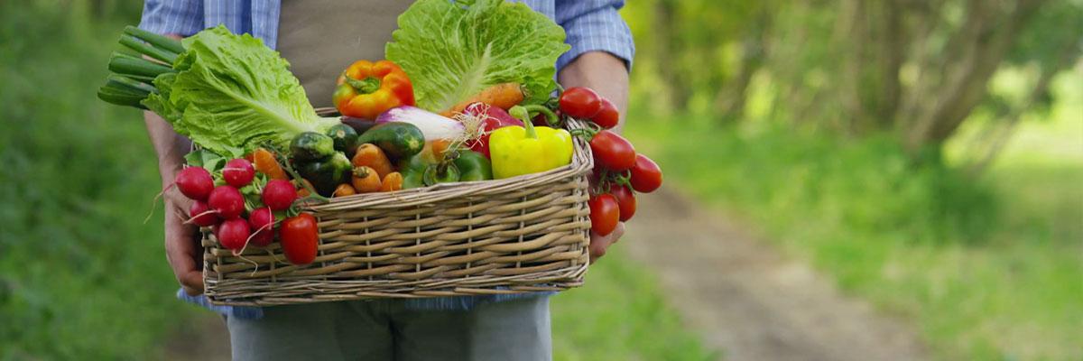 کود شیمیایی کشاورزی